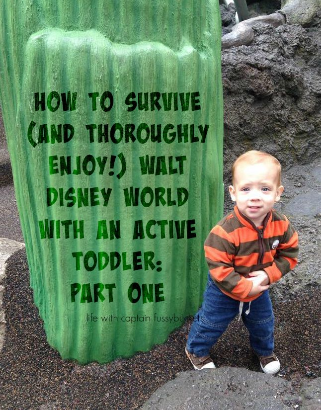 How To Survive Disney World With An Active Toddler: Part 1
