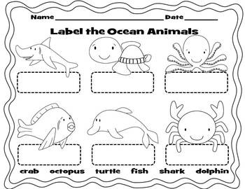 label the ocean animals worksheet sea life art kindergarten pinterest. Black Bedroom Furniture Sets. Home Design Ideas