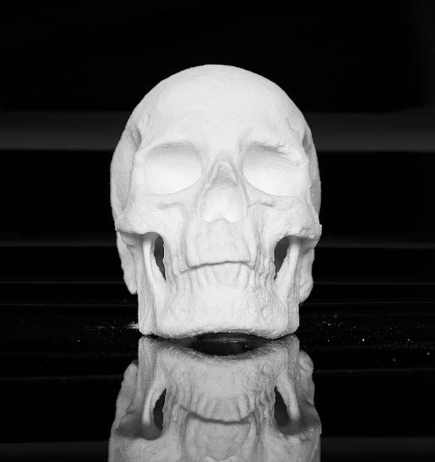 1/1 scale human skull real cocaine made