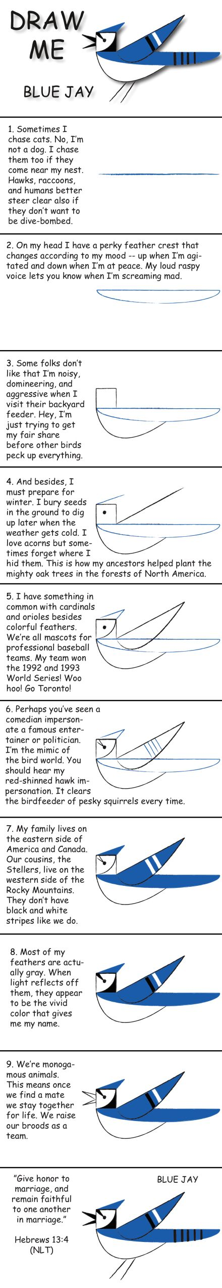 76 best birds art images on pinterest