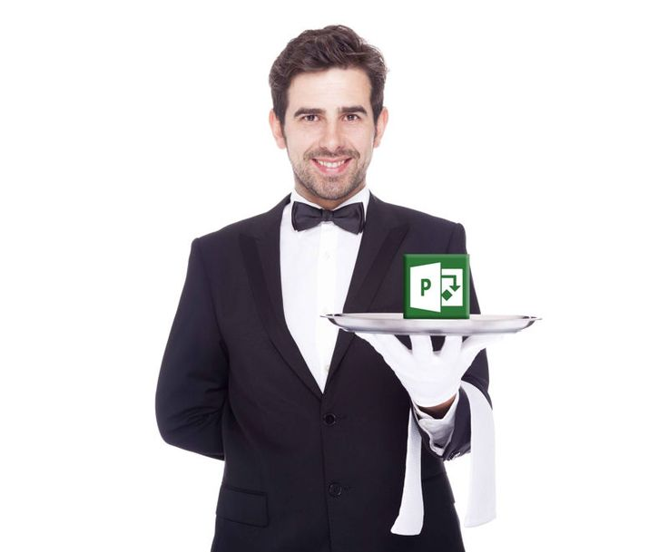 Everything Microsoft Project and Portfolio Management; jump start packages, consulting, support, training, development and free downloads http://www.projectserver.com/