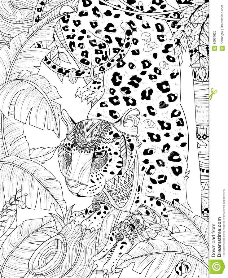 Leopard Coloring Pages Pdf : Beautiful snow leopard coloring page