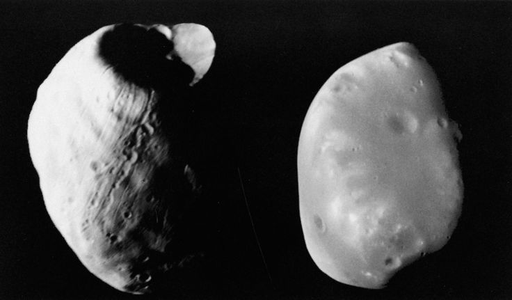 September 5, 1877: Opposition and Exciting Discoveries  The Martian moons, Phobos (left) and Deimos (right), photographed by the Viking orbiters. Deimos's smooth surface is contrasted with the grooved, pitted, and cratered surface of Phobos. The prominent cavity on the end of Phobos is the crater Stickney. The images are not to scale; Phobos is about 75 percent larger than its companion.