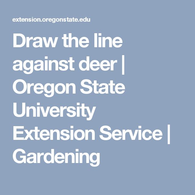 Draw the line against deer  | Oregon State University Extension Service | Gardening
