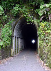 Forgotten Highway, Taranaki. Creepy road trip?