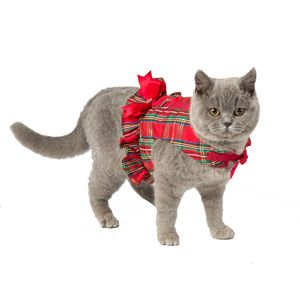 Image for Wag-A-Tude Red Plaid Bell Body Cat Harness from Pets At Home