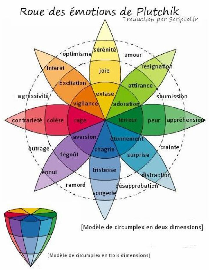 roue des émotions et ce qui en découle...