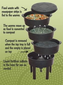 Worm bins and worm farming