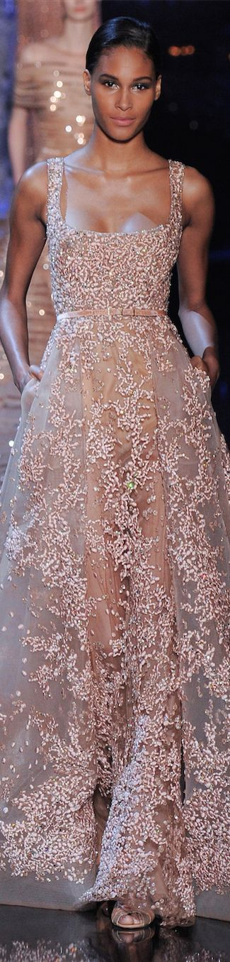 Elie Saab - great design, but the fabric is what elevates this gown to a higher stratosphere.