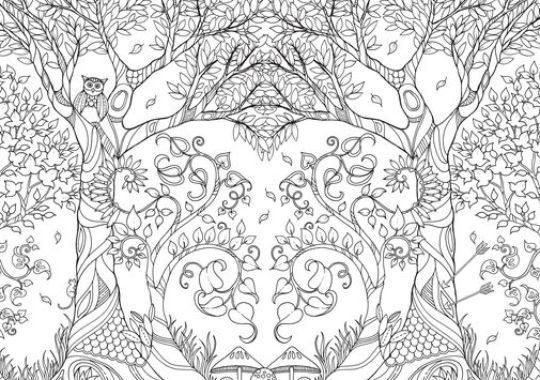 Johanna Basford Enchanted Forest Courtesy The Artist And Free Printable Coloring PagesFree