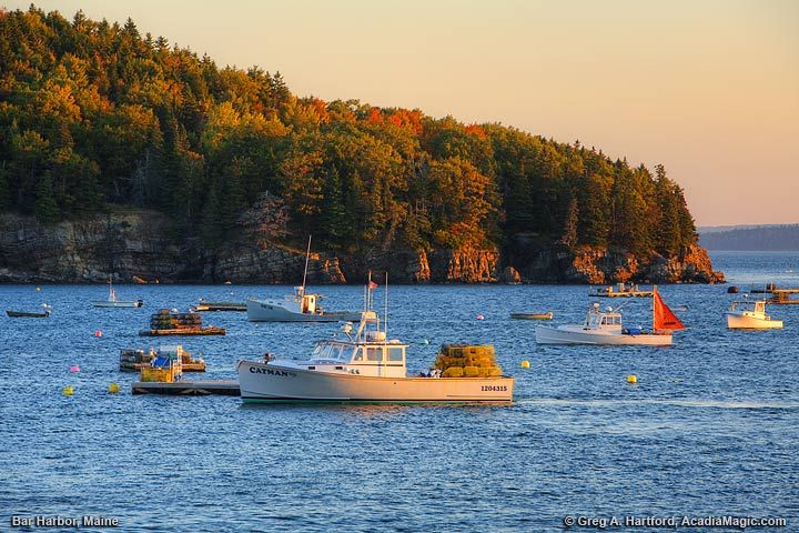 View of Lobster Boats from Bar Harbor Pier