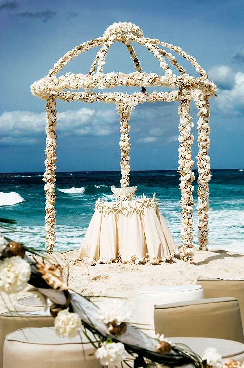 Wedding Ceremony Decorations Seashells Carnations And Starfish Arch