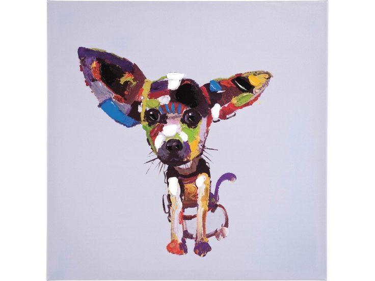 Obraz Chihuahua mały — Obrazy Kare Design — sfmeble.pl