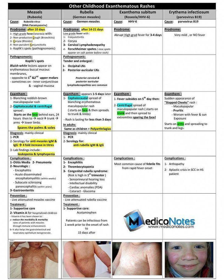 Online Nursing School in Florida OnlineNursingSchools