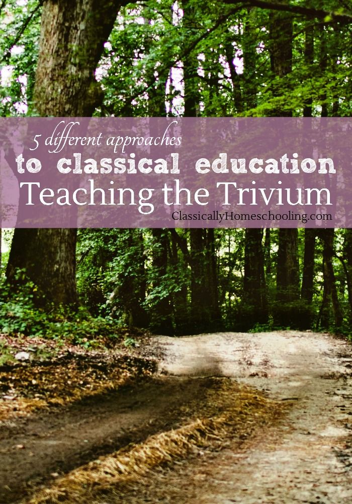 Teaching the Trivium: Christian Homeschooling in a Classical Style by Harvey and Laurie Bluedorn is yet another approach to classical education.