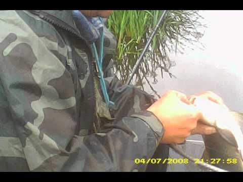 fishing (playlista)