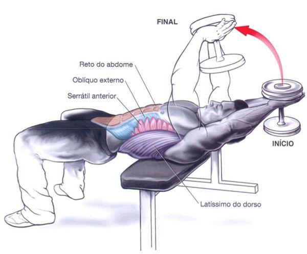Exercícios abdominais – Pullover com haltere fixo « Logon – O blogue oficial da Prozis