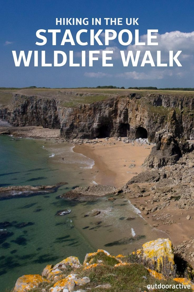 Stackpole Wildlife Walk In Pembrokeshire Hiking In The Uk
