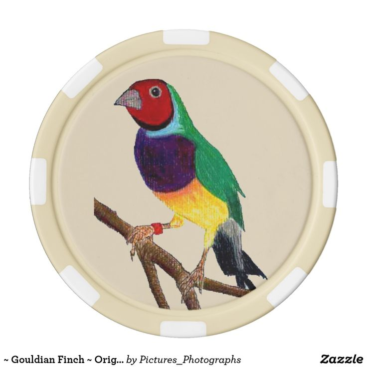 ~ Gouldian Finch ~ Original Art ~ Poker Chips