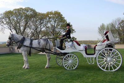 we will be leaving in a Horse Drawn Wedding Carriage: Princess, Drawn Wedding, Photo Credit, Wedding Ideas, Gay Wedding, Dream Wedding, Wedding Carriage, Carriage S Horse And Chariot