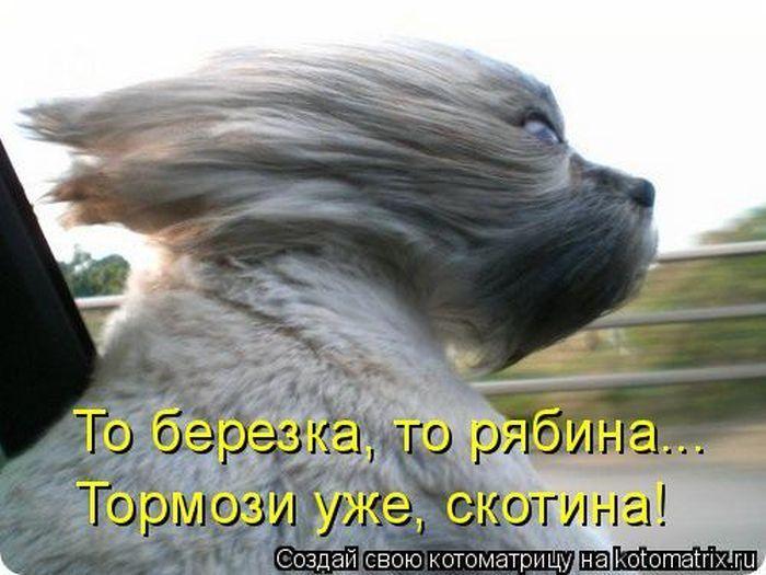 мужчина фото приколы бегу и волосы назад эффективности анестезиологической