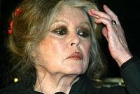 Brigitte Bardot a jugé honteuse la décision des pays membres de la Convention sur le commerce international des espèces menacées (Cites) de refuser dinterdire le commerce planétaire de lours polaire jeudi à Bangkok. Bardot fights to save endagered species. (Trying to save Endangered Species)