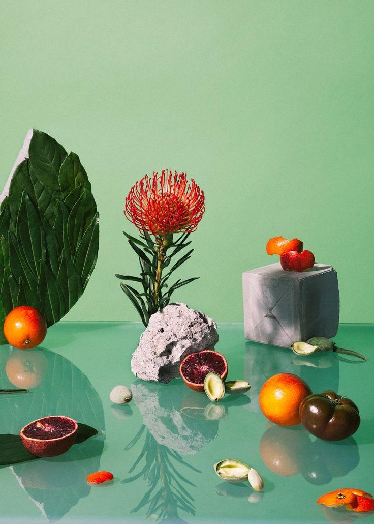 Still Life's 'Arrangements' By Melissa Gamache   Trendland