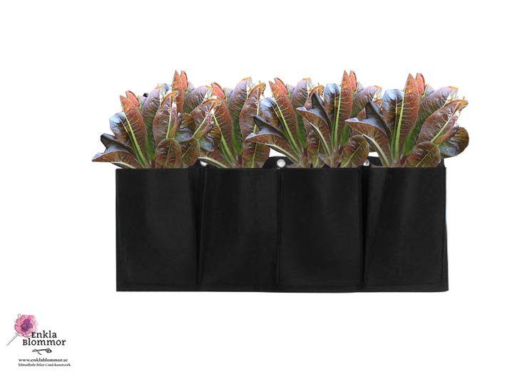VÄGGHÄNGD PLANTERINGSFICKA. Häng planteringsfickorna på väggarna, balkongräcket eller staketet till att plantera sallat, örter och kryddor och blommor.  Använd för att odla på balkongen, på terrassen eller i trädgården. Höjd 30 cm. Längd 100 cm. Material: Slitstark odlingstyg. Vattnet rinner igenom när man vattnar, så att växterna lever länge.