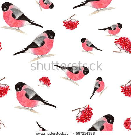Watercolor seamless pattern with bullfinches and rowan berries on white background