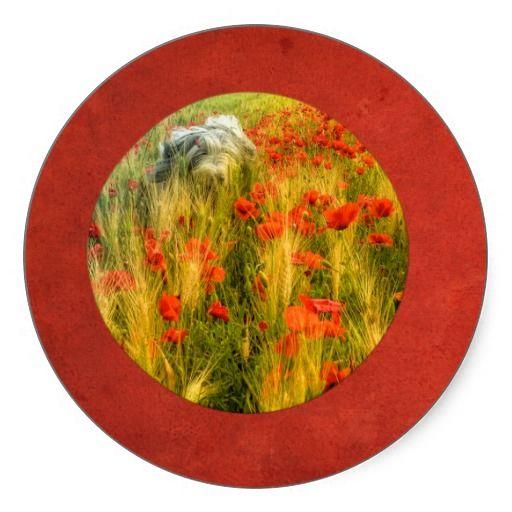 "Classic round sticker. Bearded collie ""Niki"" running in poppy field."