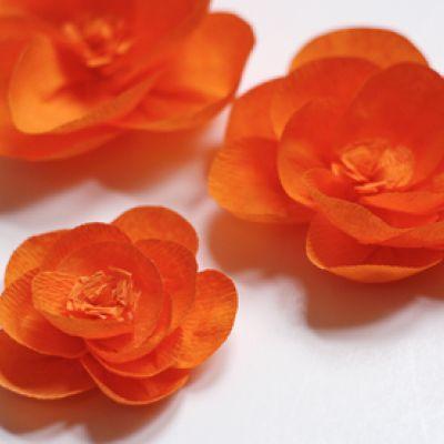 Crepe Paper Flowers {Tutorial}