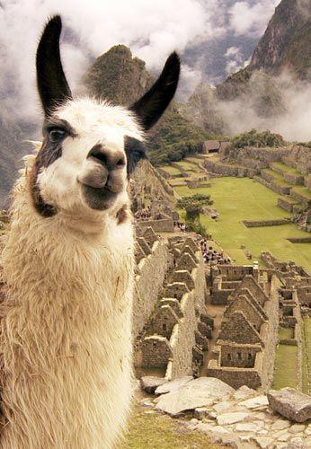 LOS ENIGMAS DE PERÚ https://www.viajarsolo.com/peru-viajar-solo                                                                                                                                                                                 Más