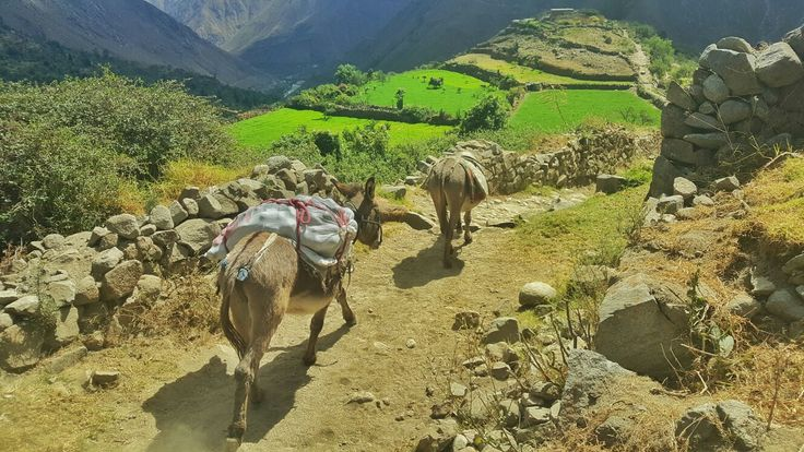 San Jerónimo de Surco, #Lima. #Perú  #Fotografia #Photo #Paisajes #Momentos #UnaImagenValeMas #Fotodiario #Viajes #Aventura #Viajeros #Turismo #Travelers #Aventureros #Travel