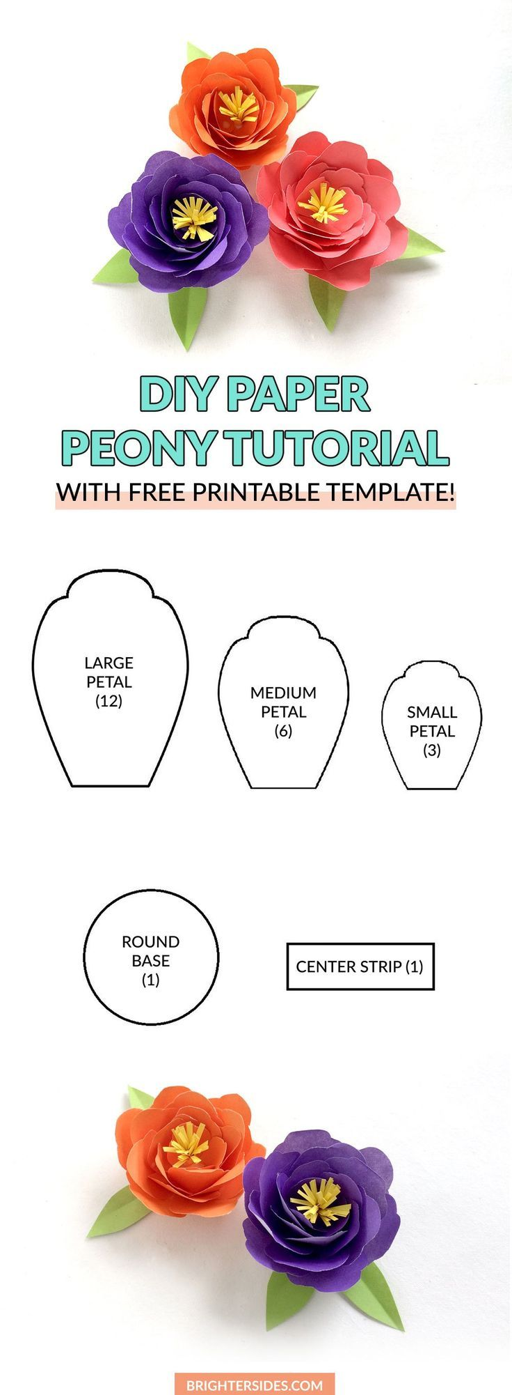 DIY paper peonies with free printable template. [how to make paper flowers, DIY …