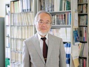 Nobel de Medicina e Fisiologia de 2016 vai para o cientista Yoshinori Ohsumi (Foto: Reprodução)