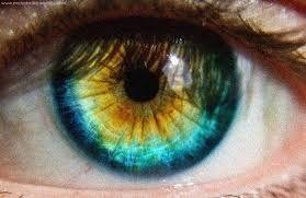Resultado de imagen para heterocromia central