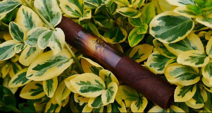 Nowy post: #Cygaro widmo, czyli #Spectre by AJ Fernandez #new #cigar #review #cigarblog: http://bit.ly/1oEGjvc