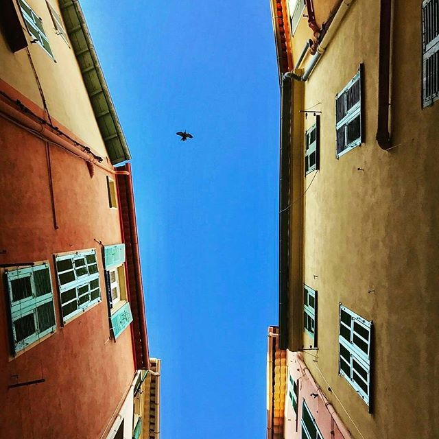 Bienvenue aux vacanciers de la zone C 😉 Au programme: soleil et ciel azur ☀ 💙 📷 @lca_ivn  #NiceMoments #Nice06 #CotedAzurNow #ILoveNice #frenchriviera #nicefrance #igersnice #nice #instagood #instalike #instadaily #instalove #holiday #sun #spring #springvibes #sky