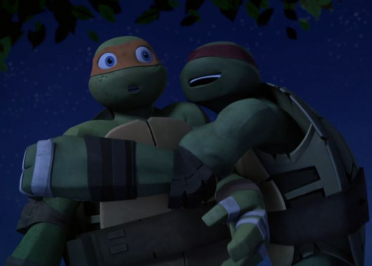 Hey, I'm Raphael. But my bros normally call me Raph...Or hothead. But that's besides the point... So...