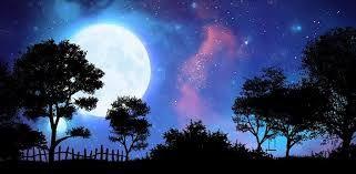 Image result for wallpaper hd night sky moon