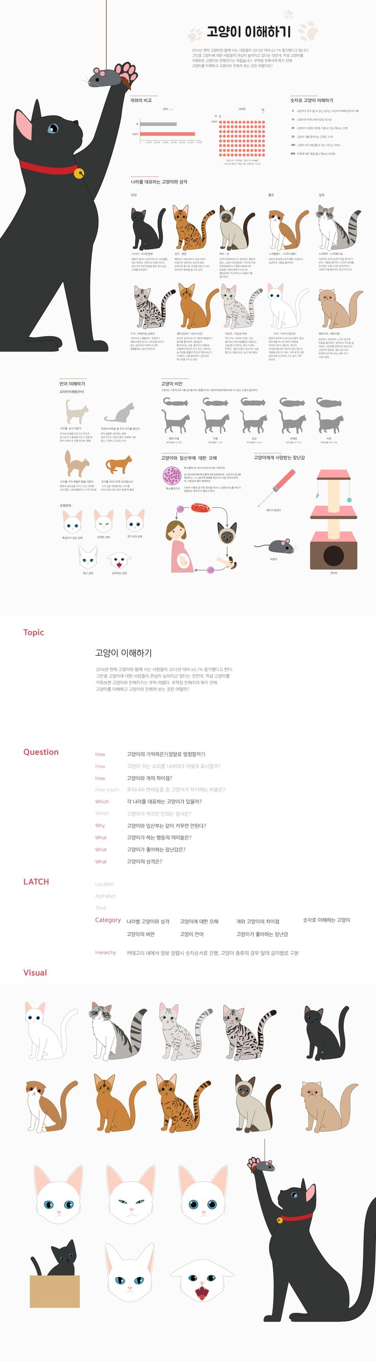 Lee Yun Ji | Infographic about cat