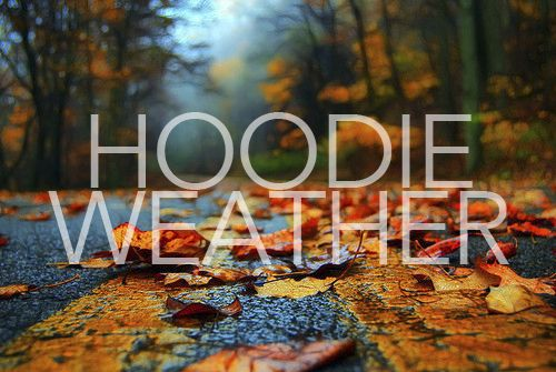 Hoodie weather quotes outdoors trees street autumn leaves fall hoodie