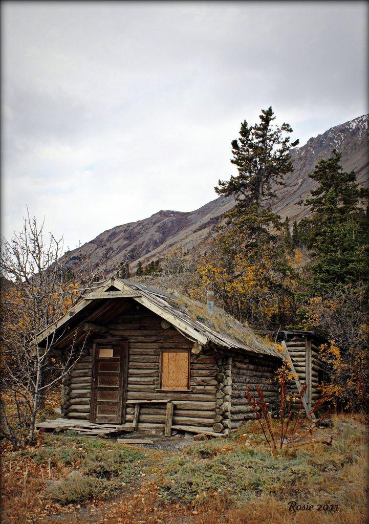 Old cabin on Slim's Creek - Yukon Territories