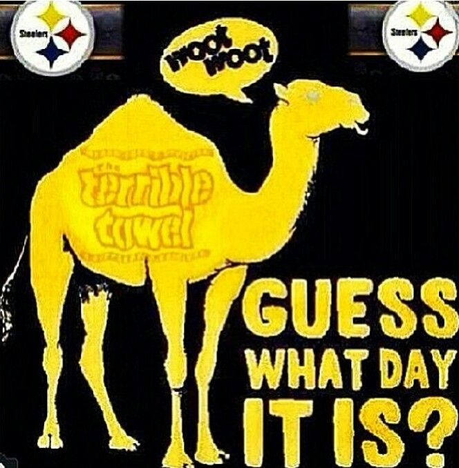 Pittsburgh Steelers~Steelers Nation ♥♥Guess what day it is?