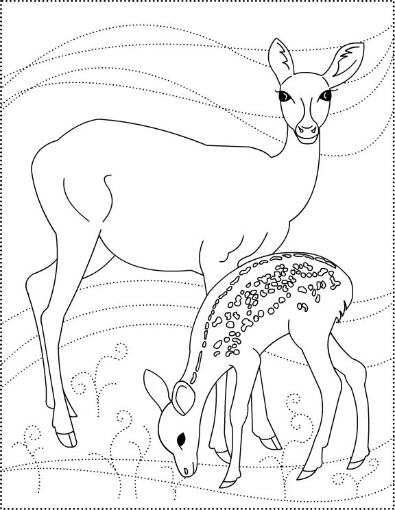 The 25+ best Deer coloring pages ideas on Pinterest | Adult ...