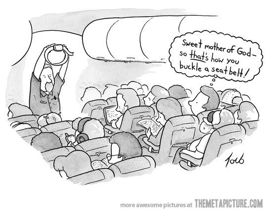 I would have never known…: The New Yorker, Cartoon, Funny Pictures, Airplane, Seats Belts, Funny Stuff, Things, Smile, Flight Attendance