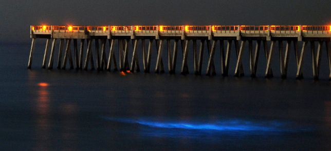 Navarre Beach, Florida glowing ocean, I'll be walking this Pier next week....