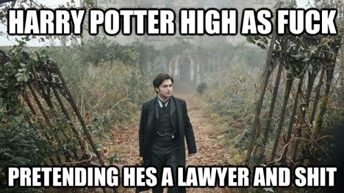 lol: Potter Changing, Silly Harry, Potter Corner, Giggles, Harry Potter, Harry Plopper