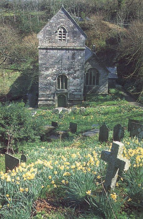 Cemetery                                                       …