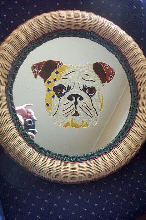 pup bulldog